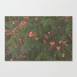 Fuzzy Flowers. Canvas Print