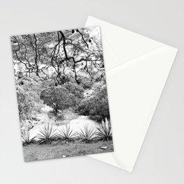 Oaxaca Mountain Stationery Cards