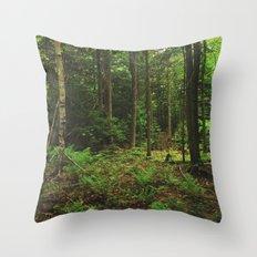 Pathfinder II Throw Pillow