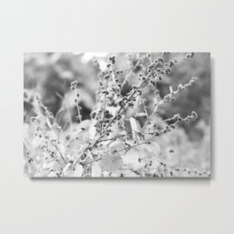 A touch of grey Metal Print
