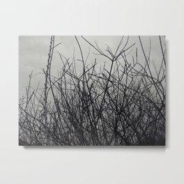 Botanic 3 Metal Print
