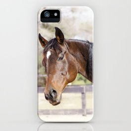 Dazzling Eyes Gulliver iPhone Case