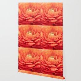 Soft Layers Wallpaper