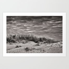 Brigantine Dunes III Art Print
