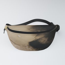 Ink Froth Fanny Pack