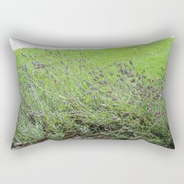 Lavender Flowers at Glamis Castle Rectangular Pillow