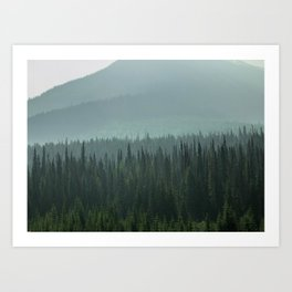 Misty Pine Trees Photography, Forest Mountain Landscape Photography Art Print