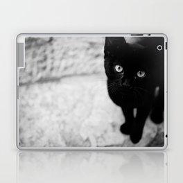 Croatian Kitten Laptop & iPad Skin