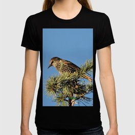 O My Starling, Clementine! T-shirt
