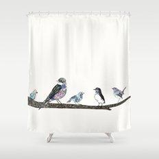 Birds.  Shower Curtain