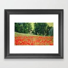 Poppy frenzy  Framed Art Print