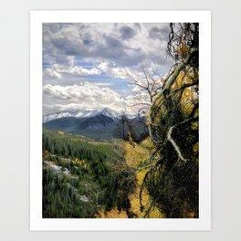 Wilderness Trail Art Print