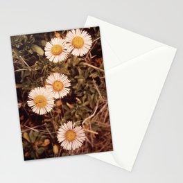 CALIFORNIA POINT LOBOS RESERVE NARA 543197 Stationery Cards
