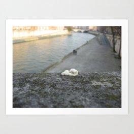 gum, Paris Art Print