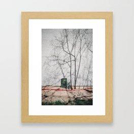 Forest City Framed Art Print