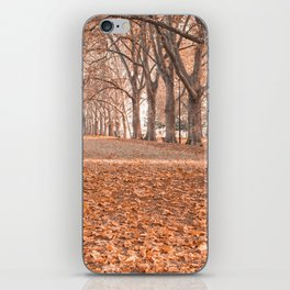Autumn in Melbourne iPhone Skin