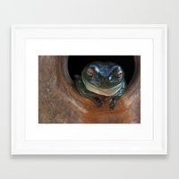 ashton irwin Framed Art Prints featuring Irwin the Frog by Morgan Roddick