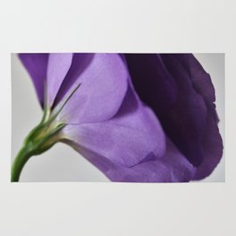 Lilac delights 2 Rug
