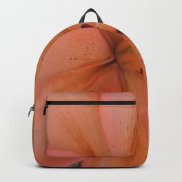 big and orange. Backpack