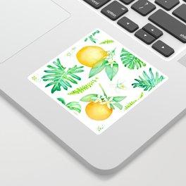 Citrus Tropics - White Sticker