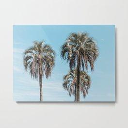 El Palmar National Park Palm Trees Blue Sky | Entre Rios, Argentina | Travel Landscape Photography Metal Print