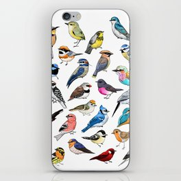 Birds iPhone Skin