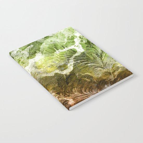 γ Gruis Notebook