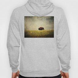 Lone Buffalo Hoody