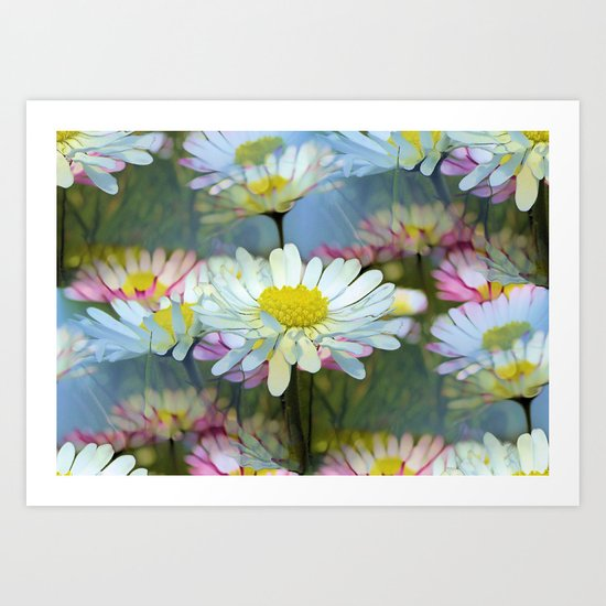 Dreaming Daisies Art Print