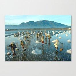 Hon Khoi salt fields - Viet Nam Canvas Print