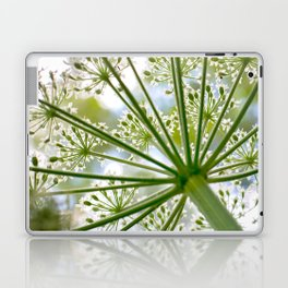 Delicate cow parsley Laptop & iPad Skin