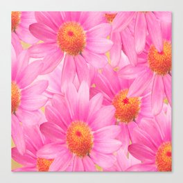 Bunch of pink daisy flowers - a fresh summer feel in pink color Canvas Print
