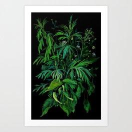 Green & Black, Floral Art Art Print