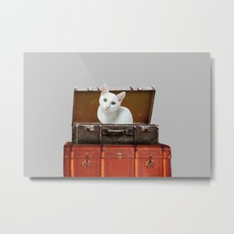 White little cat in suitcase  Metal Print
