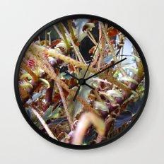 Dragon Fight    [PLANTS]   [VINES] Wall Clock