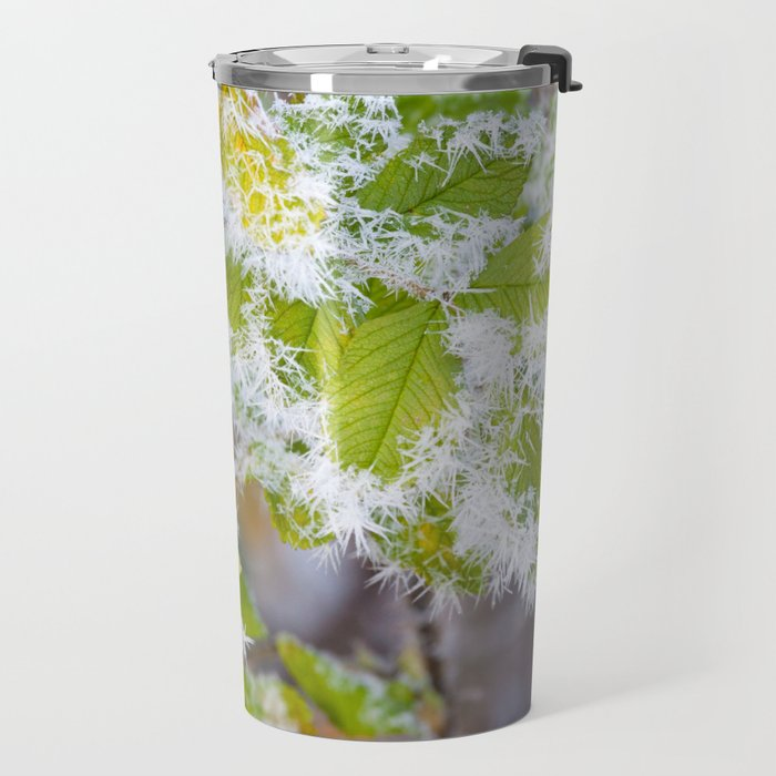 Rose hip and frozen leaves Travel Mug