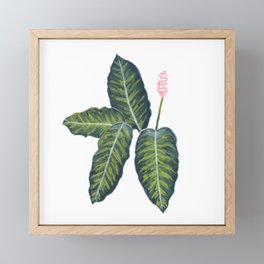 Tropical plant Framed Mini Art Print