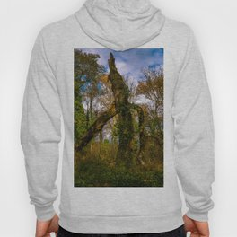 Forest guard Hoody