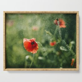 Red Poppy on Green background with bokeh Serving Tray