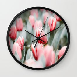 Pink Tulip Bulbs In A Field Green Leaves Wall Clock