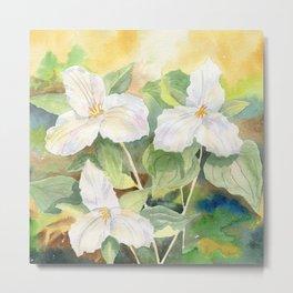 Trillium Wildflowers Watercolor  Metal Print
