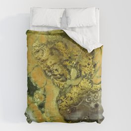 Stonedscape Two Comforters