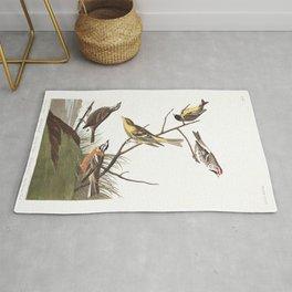 Ankansaw siskin, Birds of America, Audubon Plate 400 Rug