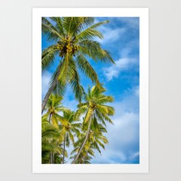 Coconut Palm Trees against the blue sky at Isle of Pines in New Caledonia. Art Print