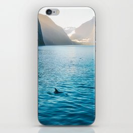 Morning sun glow and dolphins at Milford Sound iPhone Skin