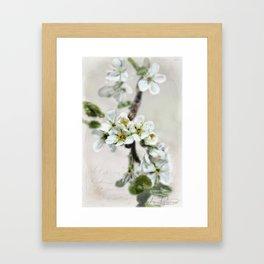 Scattered Kindness  Framed Art Print