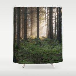 Winter Sunbeams Shower Curtain