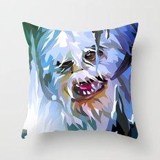 SW#34 Throw Pillow