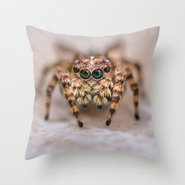 Orange-Brown Jumping Spider Macro Photograph Throw Pillow