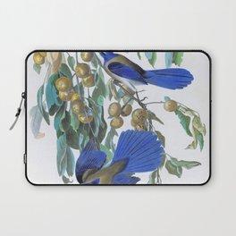 12,000pixel-500dpi - Florida Jay - John James Audubon Laptop Sleeve